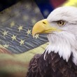 Photo: Bald eagle with grungy looking americflag