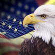 Stock Photo: Bald eagle with grungy looking americflag