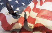 American Flag, flying bald Eagle,statue of liberty — ストック写真