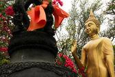Buddha garden Bangkok Tempel thailand — Stockfoto