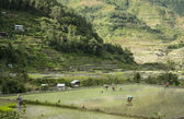 Mountain village banaue luzon philippines — Stock Photo