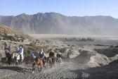 Mount bromo volcano horseback tour — Stock Photo