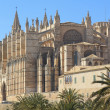 Palma Cathedral City Walls Majorca - Stock Photo