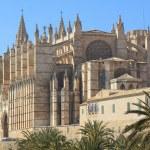 Palma Cathedral City Walls Majorca — Stock Photo #24348667
