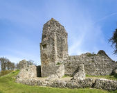 Berkhamsted castle ruins hertfordshire — Stock Photo