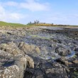 Dunstanburgh castle northumberland coast — Stock Photo