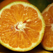 Oranges — Stockfoto #25799495