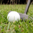 Shot of a golf putter and ball — Stock Photo