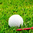 Golf ball on grass — Stock Photo #42011857