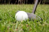 Schuss aus einem Golf Putter und ball — Stockfoto