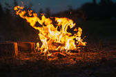 High flame of a bonfire. Fire in night — Foto de Stock