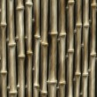 Bamboo fence backgrounds. abstract pattern — Stock Photo