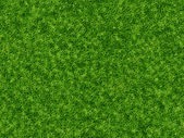 Lush green grass texture. wallpapers pattern — Stock Photo