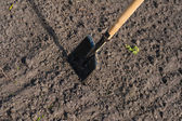 Toil work of ground. spade insert soil — Stock Photo