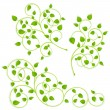 Collection of green branches — Stock Vector #20141619