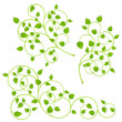Collection of green branches — Stock Vector