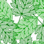 Summer leaves — Stock Vector
