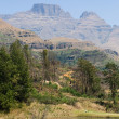 Drakensberg mountain in south africa — Stock Photo #12386362