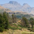 Drakensberg mountain in south africa — Stock Photo