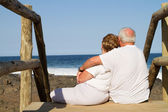 Rear view of senior couple on beach — Stock Photo