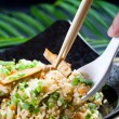 Foto Stock: Eating chinese stir fry rice with chopsticks and spoon