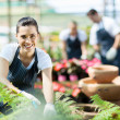 Stock Photo: Happy female nursery worker trimming plants in greenhouse