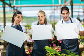 Group of funny nursery workers with white board in greenhouse — Stockfoto