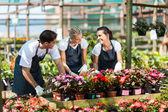 Grupo de trabajadores jardín en vivero — Foto de Stock