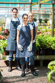 Group gardeners portrait in greenhouse — Stock Photo