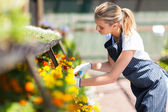 Young female florist working in nursery — Stock Photo