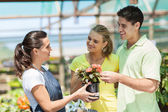 Young couple buying flowers in nursery — Stock Photo