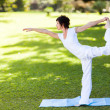 Stock Photo: Elegant middle aged woman doing yoga outdoors