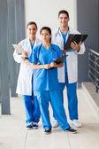 Sağlık çalışanları tam uzunlukta dikey grup — Stok fotoğraf