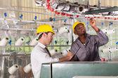 Trabalhador de fábrica têxtil e controlador de qualidade, verificação da qualidade — Foto Stock