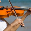 Attractive young woman playing violin on beach — Foto de Stock