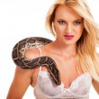 Sexy blonde woman posing with python in studio — Stock Photo