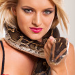 Young blonde woman holding serpent — Stock Photo