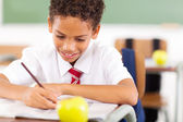 Primary schoolboy writing class work — Stock Photo