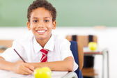 Elemantary schoolboy writing in classroom — Stock Photo