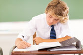 High school student writing in classroom — Stok fotoğraf