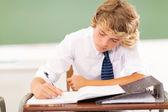 Studente di liceo scrivendo in aula — Foto Stock