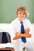 Middle school teen student in classroom — Stock Photo