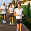 Modern family jogging — Stock Photo #25258069