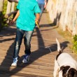 Little girl walking her dog — Stock Photo