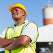 Stock Photo: Africmale constructor
