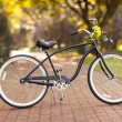 New bicycle at the park with flowers — Stock Photo