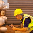 Stock Photo: Senior shipping worker inspecting machinery