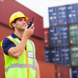 Foto Stock: Harbor worker talking on the walkie-talkie