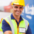Stock Photo: Senior container shipping company worker