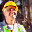 Middle aged chemical industry worker — Stock Photo